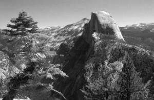 YosemiteTreeandHalfDome